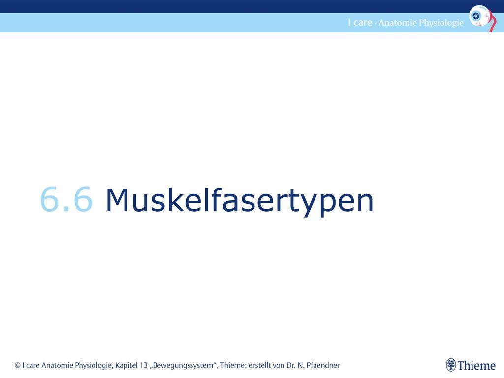 Wunderbar Anatomie Und Physiologie Websites Fotos - Anatomie Von ...