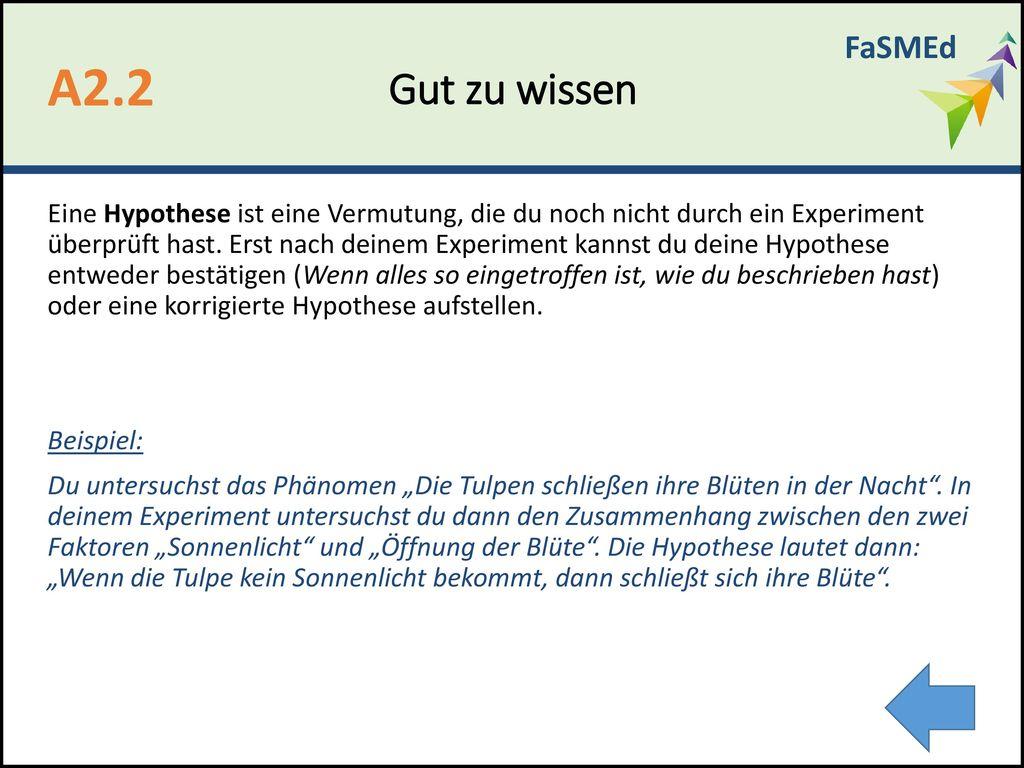 Tolle Hypothese Vorlage Galerie - Beispiel Wiederaufnahme Vorlagen ...