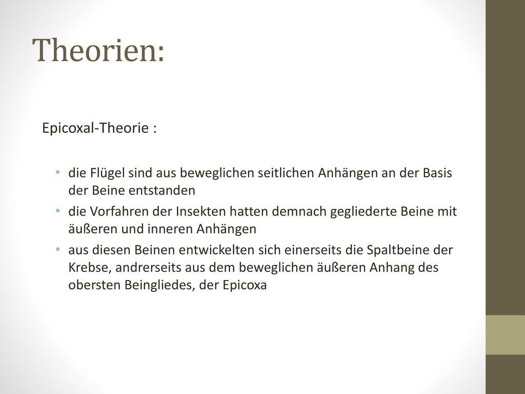 Groß Krebse äußere Anatomie Zeitgenössisch - Anatomie Von ...