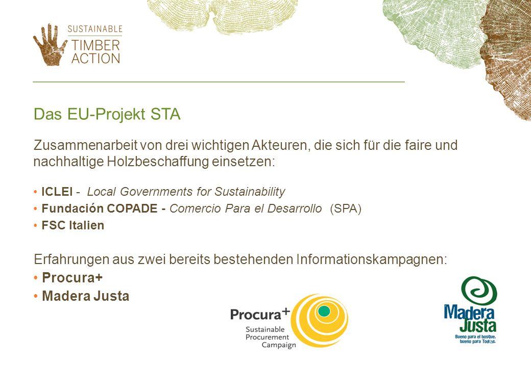 Das EU-Projekt STA Zusammenarbeit von drei wichtigen Akteuren, die sich für die faire und nachhaltige Holzbeschaffung einsetzen: