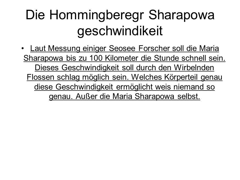 Die Hommingberegr Sharapowa geschwindikeit