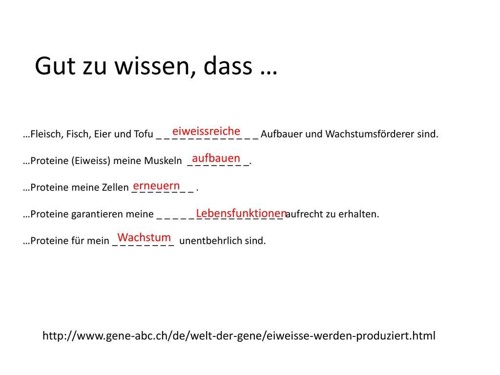 Funky Wie Proteine Hergestellt Arbeitsblatt Embellishment ...