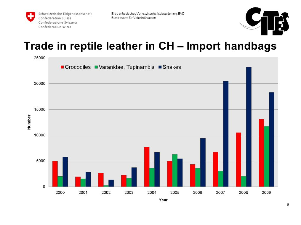 Trade in reptile leather in CH – Import handbags