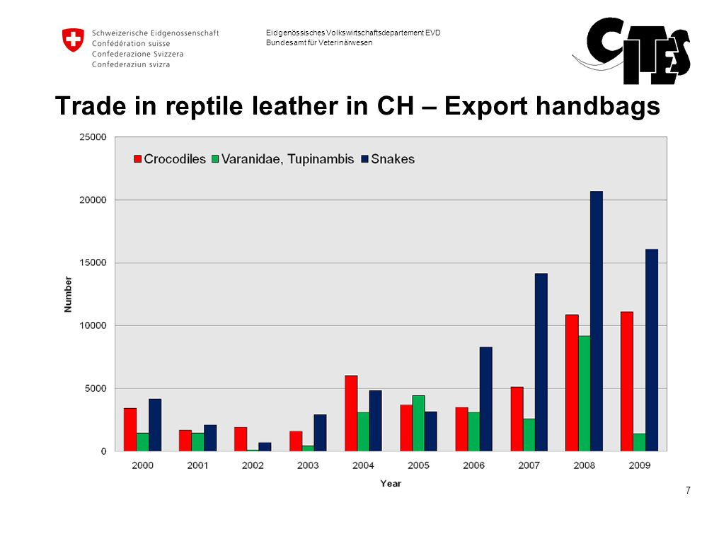 Trade in reptile leather in CH – Export handbags