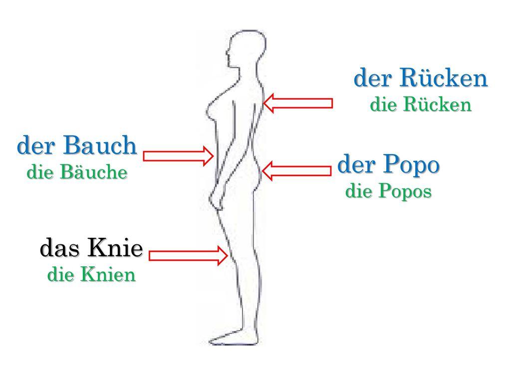Großzügig Kniegelenk Muskeln Zeitgenössisch – dede14