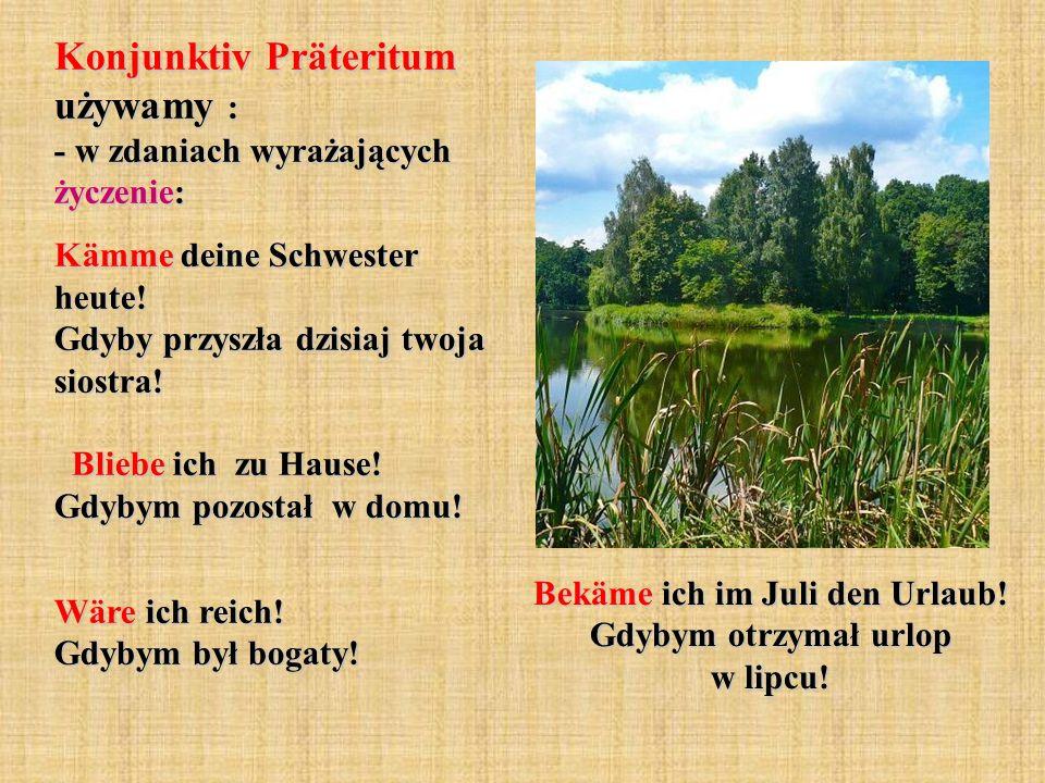 Bekäme ich im Juli den Urlaub! Gdybym otrzymał urlop w lipcu!