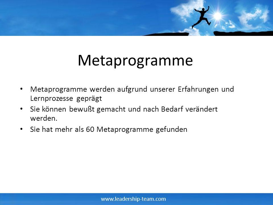 Metaprogramme Metaprogramme werden aufgrund unserer Erfahrungen und Lernprozesse geprägt.