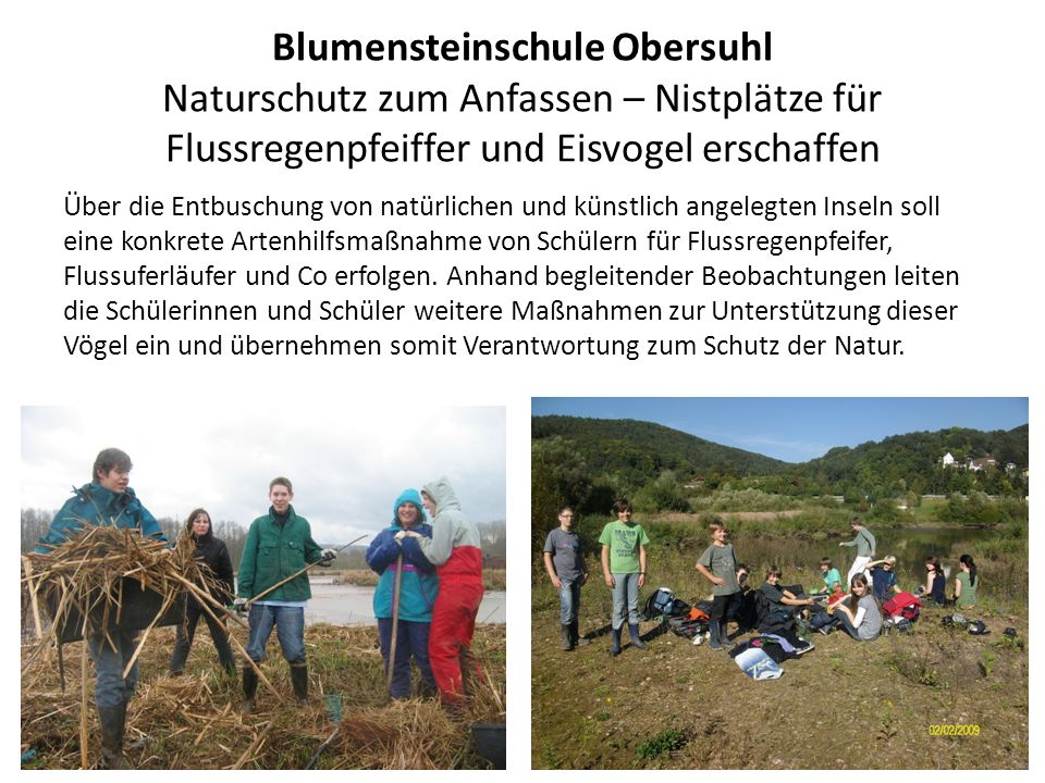 Blumensteinschule Obersuhl Naturschutz zum Anfassen – Nistplätze für Flussregenpfeiffer und Eisvogel erschaffen