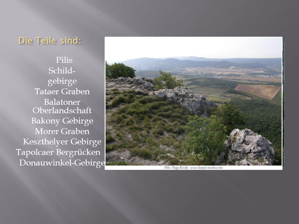 Balatoner Oberlandschaft