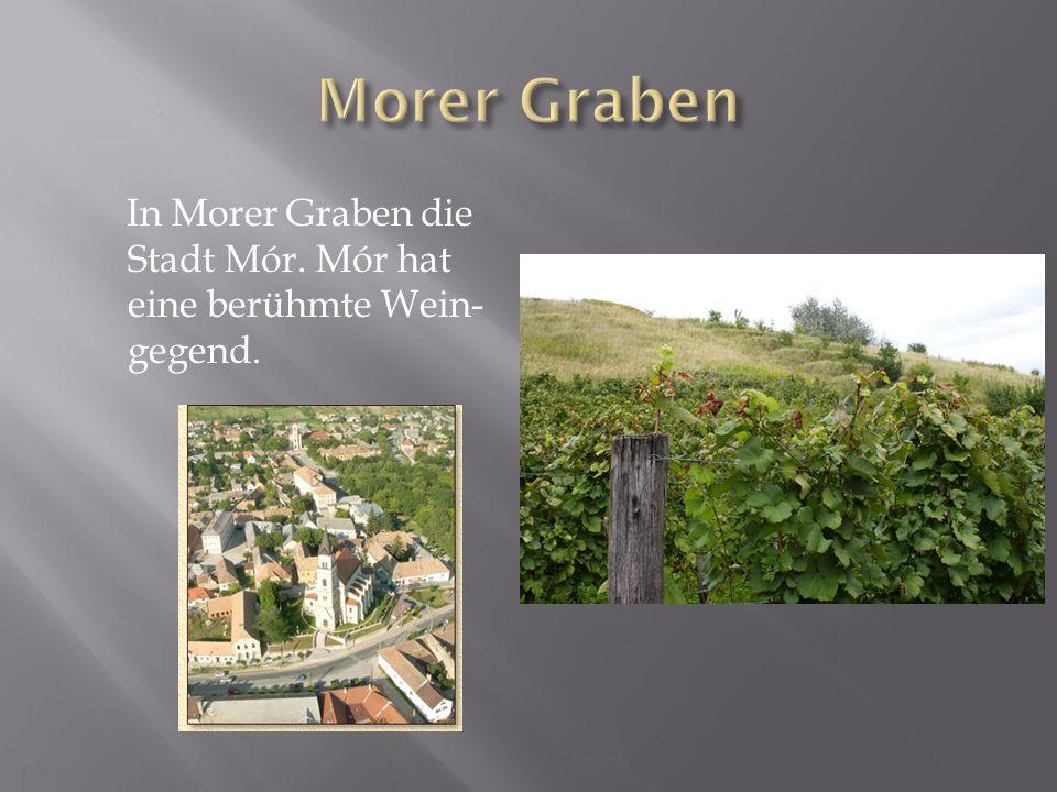 Morer Graben In Morer Graben die Stadt Mór. Mór hat eine berühmte Wein- gegend.