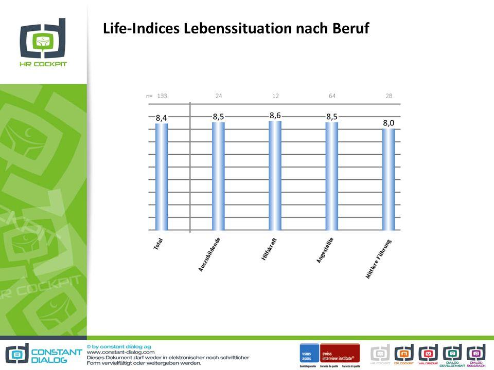 Life-Indices Lebenssituation nach Beruf