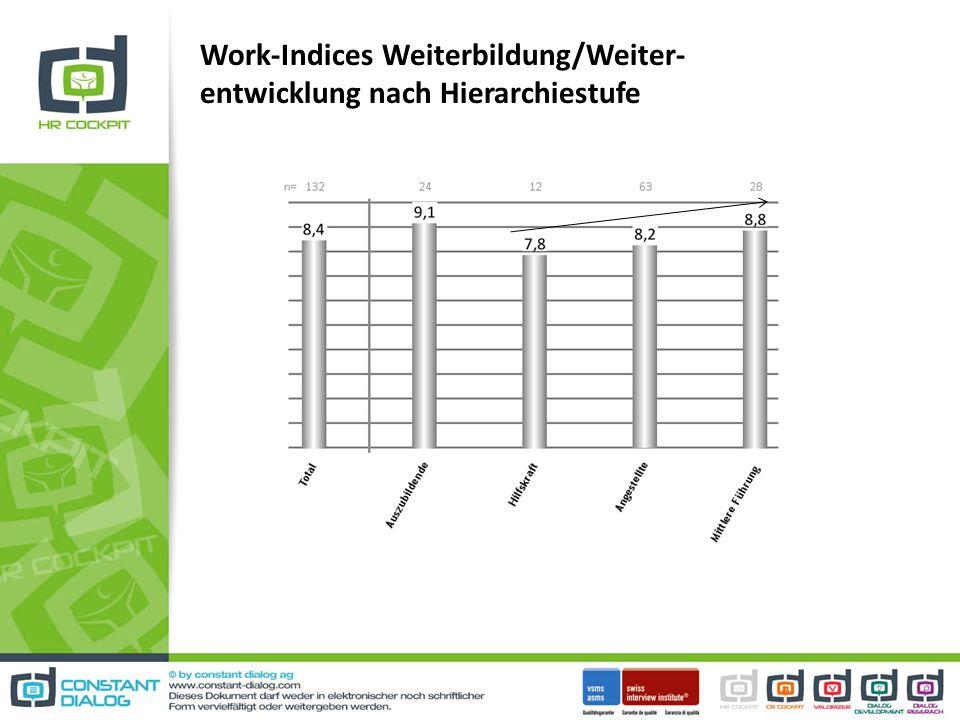 Work-Indices Weiterbildung/Weiter-entwicklung nach Hierarchiestufe