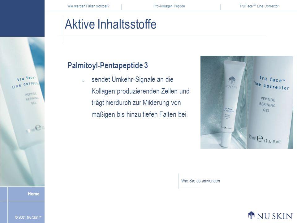 Aktive Inhaltsstoffe Palmitoyl-Pentapeptide 3