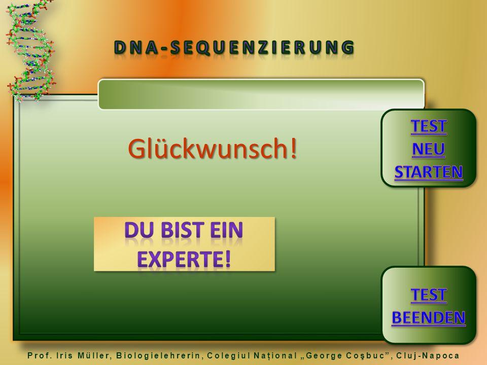 Glückwunsch! DU BIST EIN EXPERTE! DNA-Sequenzierung TEST NEU STARTEN