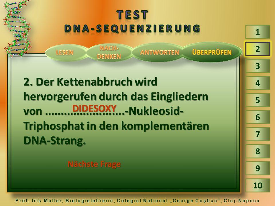 TEST DNA-Sequenzierung