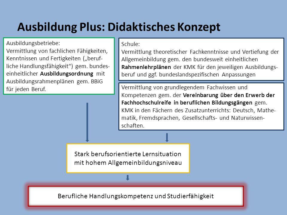 Ausbildung Plus: Didaktisches Konzept
