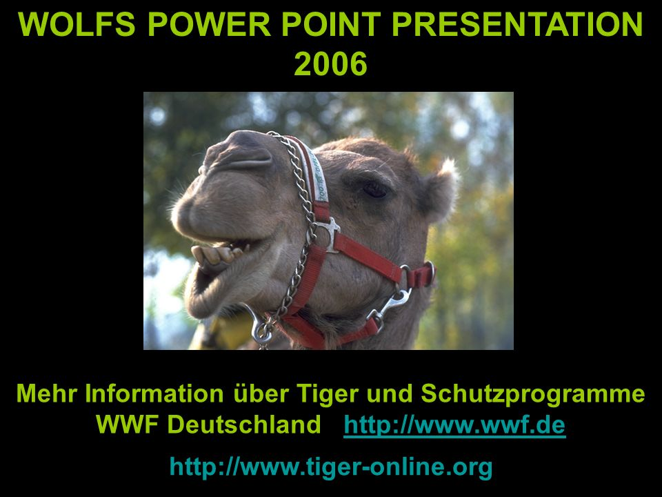 WOLFS POWER POINT PRESENTATION 2006