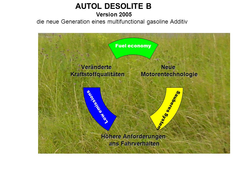 AUTOL DESOLITE B Version 2005