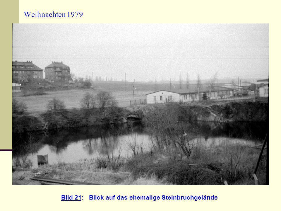 Bild 21: Blick auf das ehemalige Steinbruchgelände