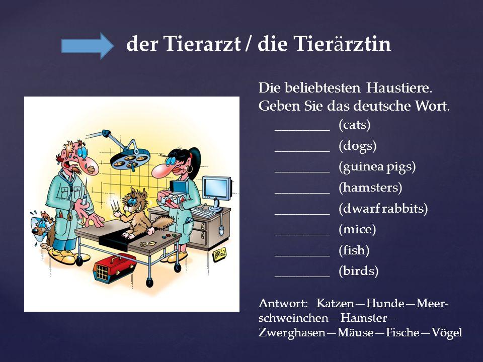 der Tierarzt / die Tierärztin