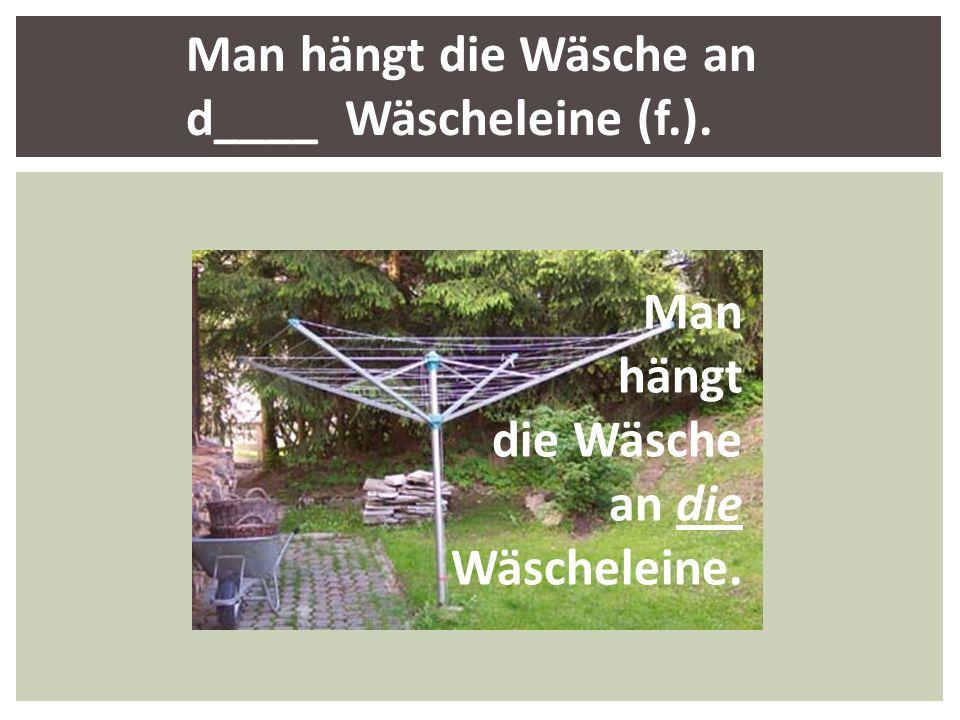 Man hängt die Wäsche an d____ Wäscheleine (f.).