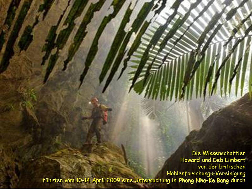 Die Wissenschaftler Howard und Deb Limbert von der britischen Höhlenforschungs-Vereinigung führten vom 10-14 April 2009 eine Untersuchung in Phong Nha-Ke Bang durch