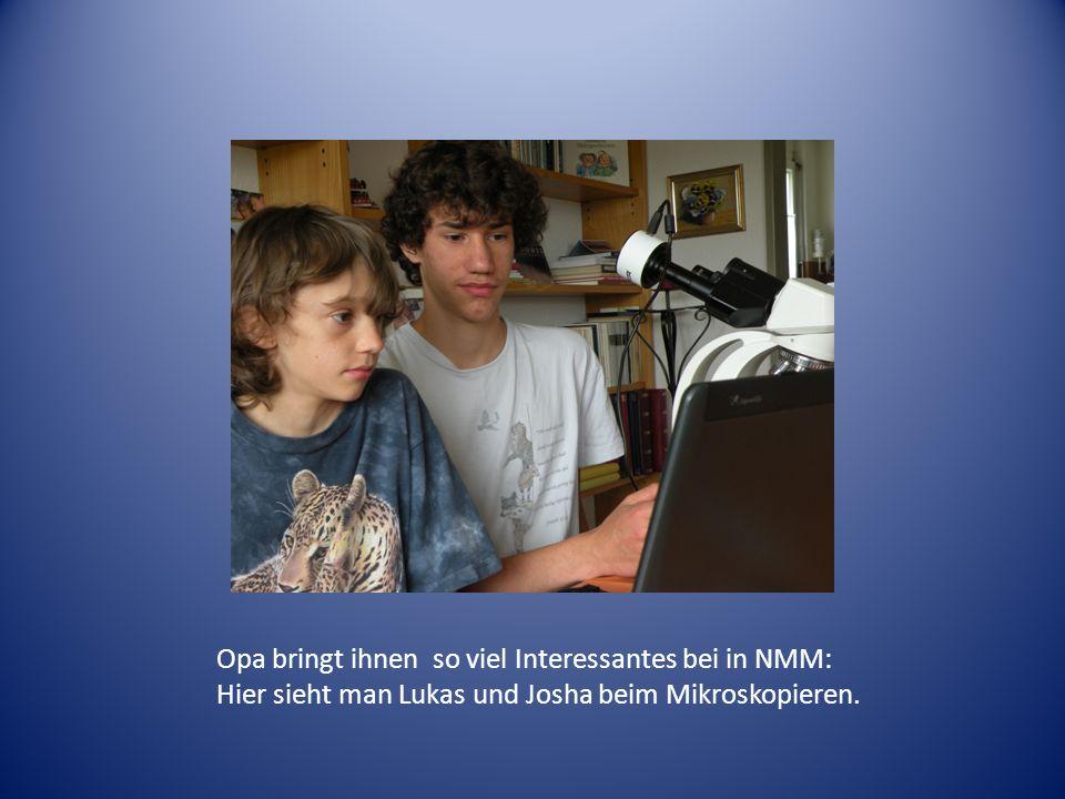 Opa bringt ihnen so viel Interessantes bei in NMM: