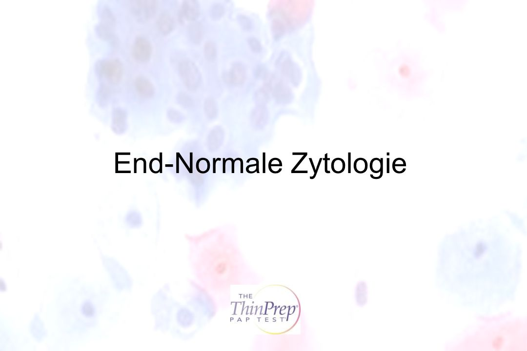 End-Normale Zytologie