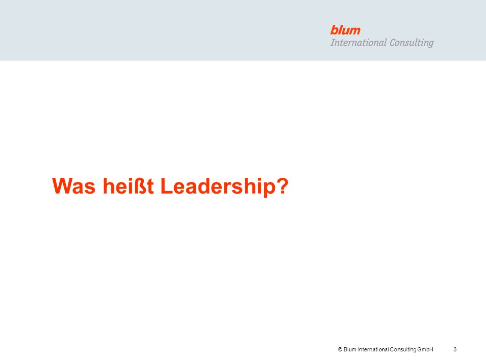 Was heißt Leadership © Blum International Consulting GmbH
