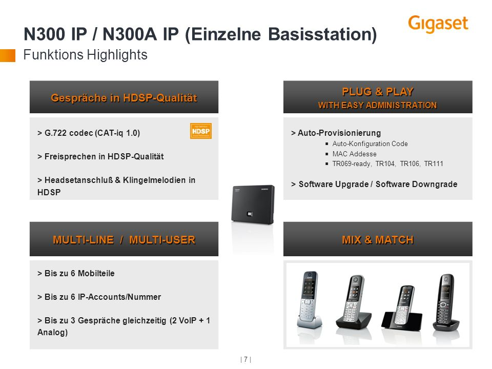 N300 IP / N300A IP (Einzelne Basisstation) Funktions Highlights