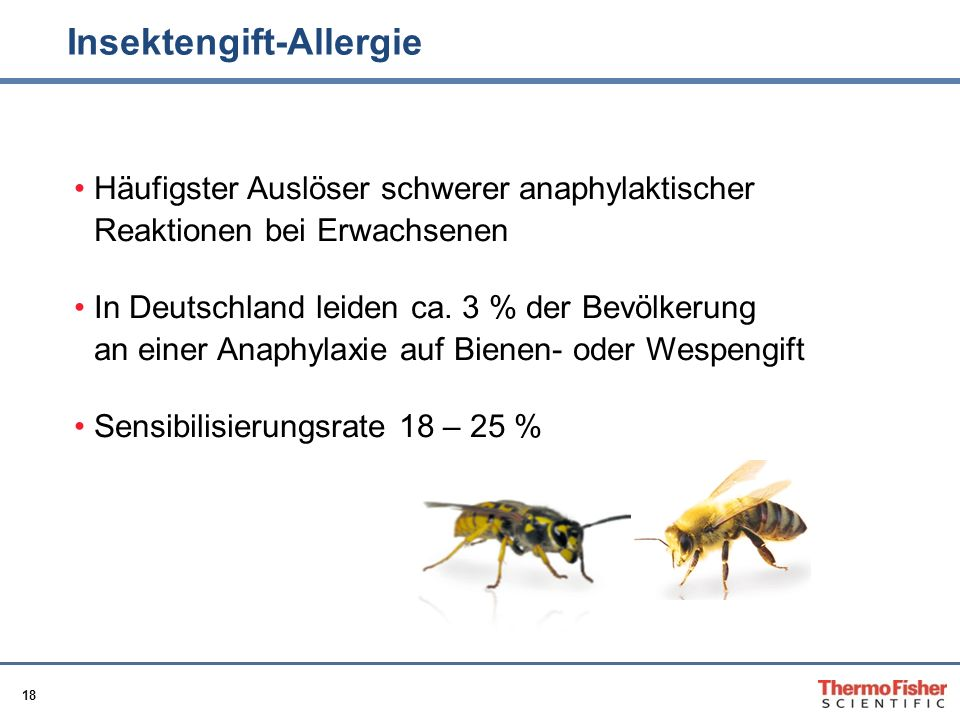 Insektengift-Allergie