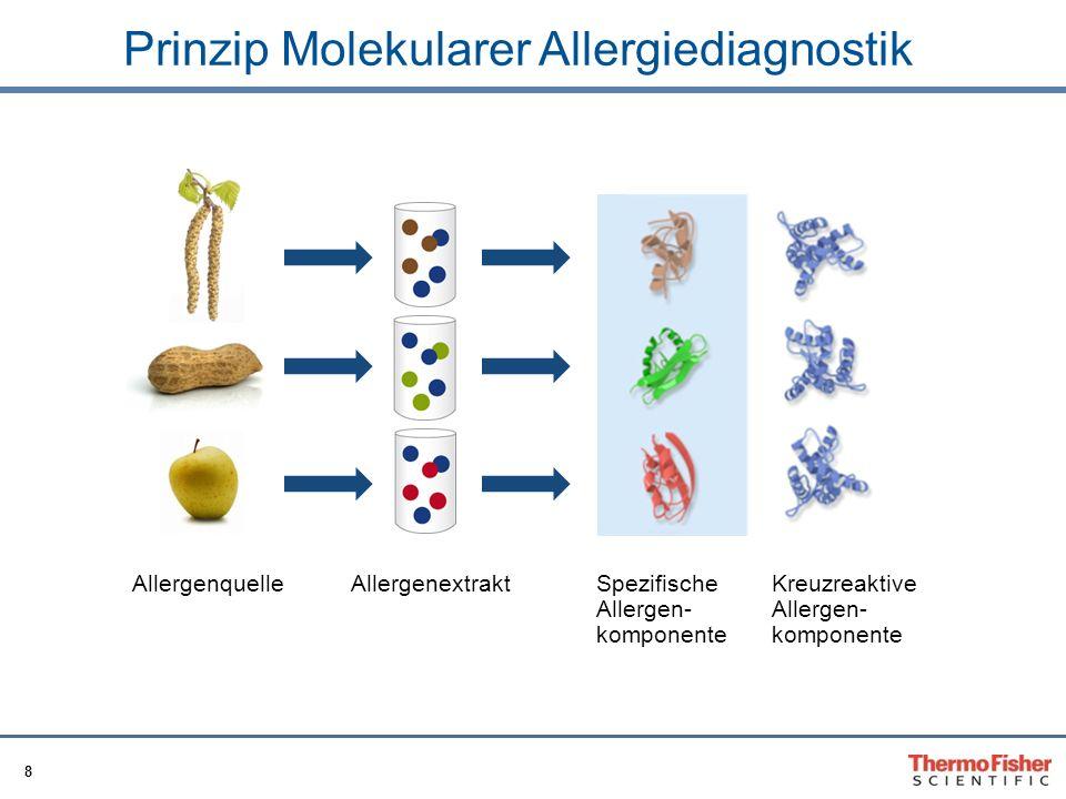Prinzip Molekularer Allergiediagnostik