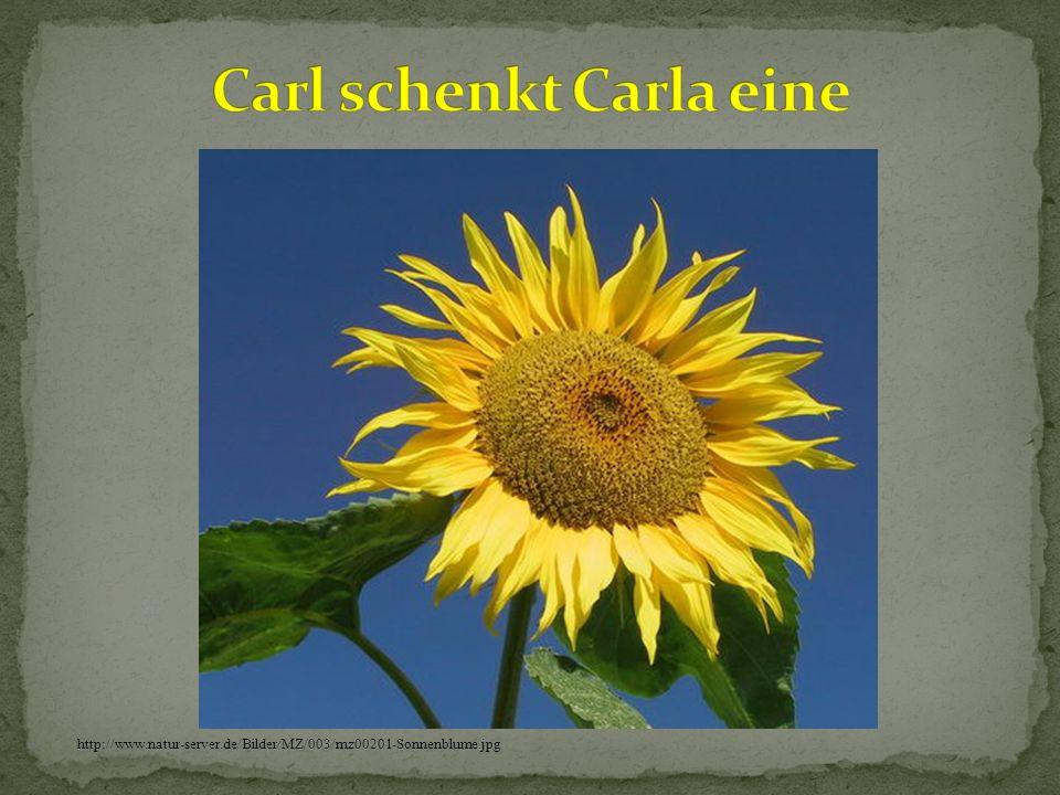 Carl schenkt Carla eine