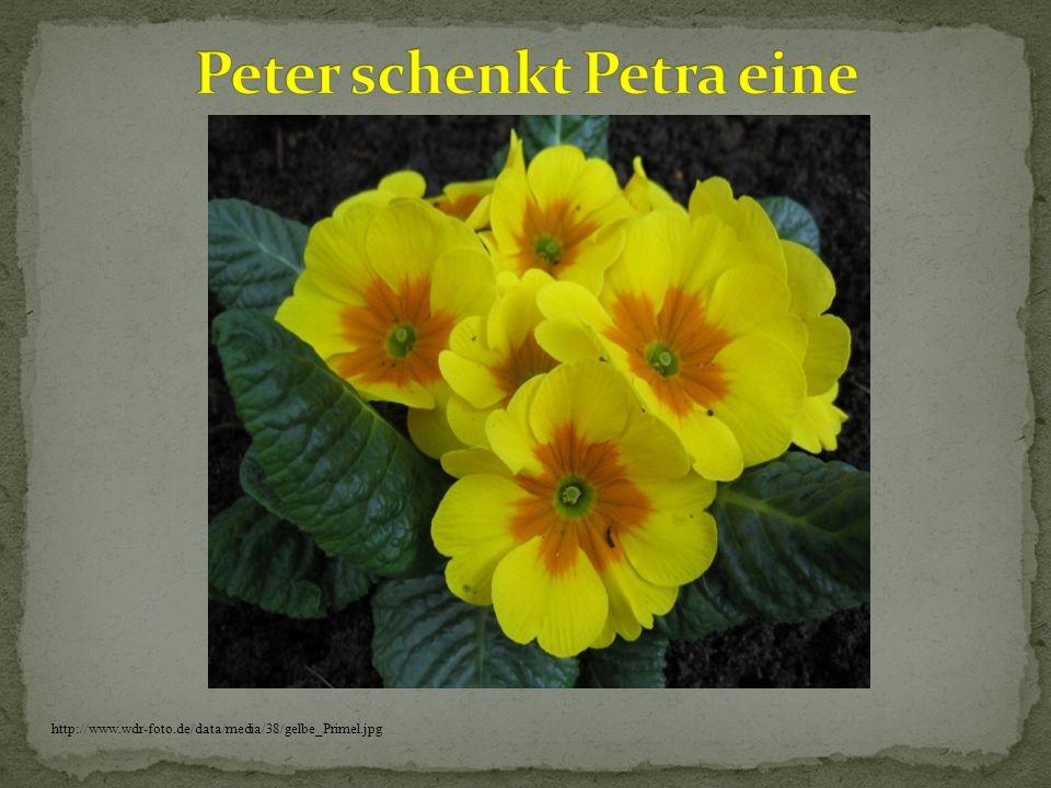Peter schenkt Petra eine