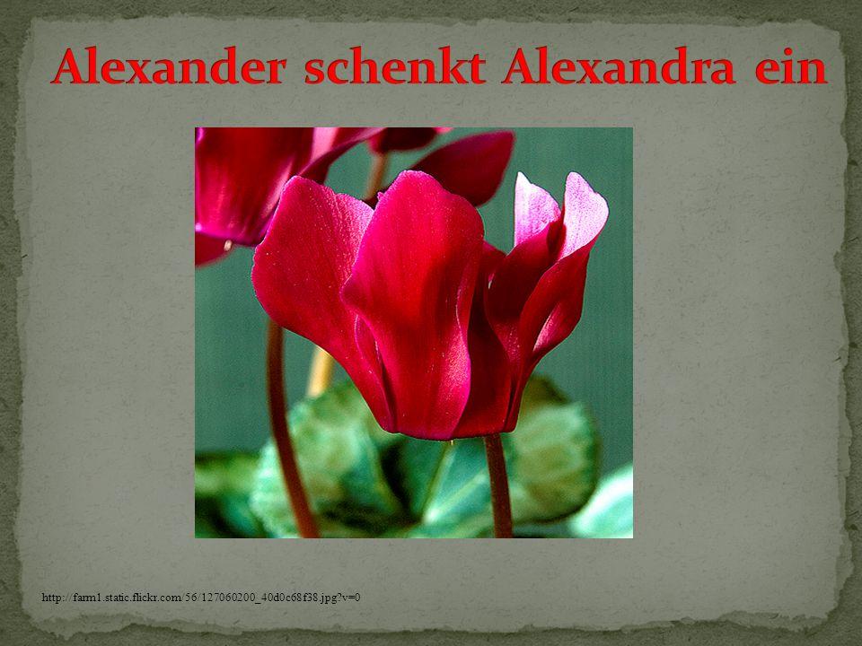 Alexander schenkt Alexandra ein