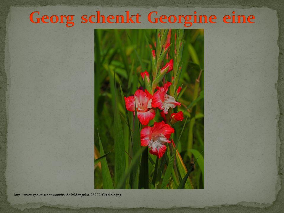Georg schenkt Georgine eine
