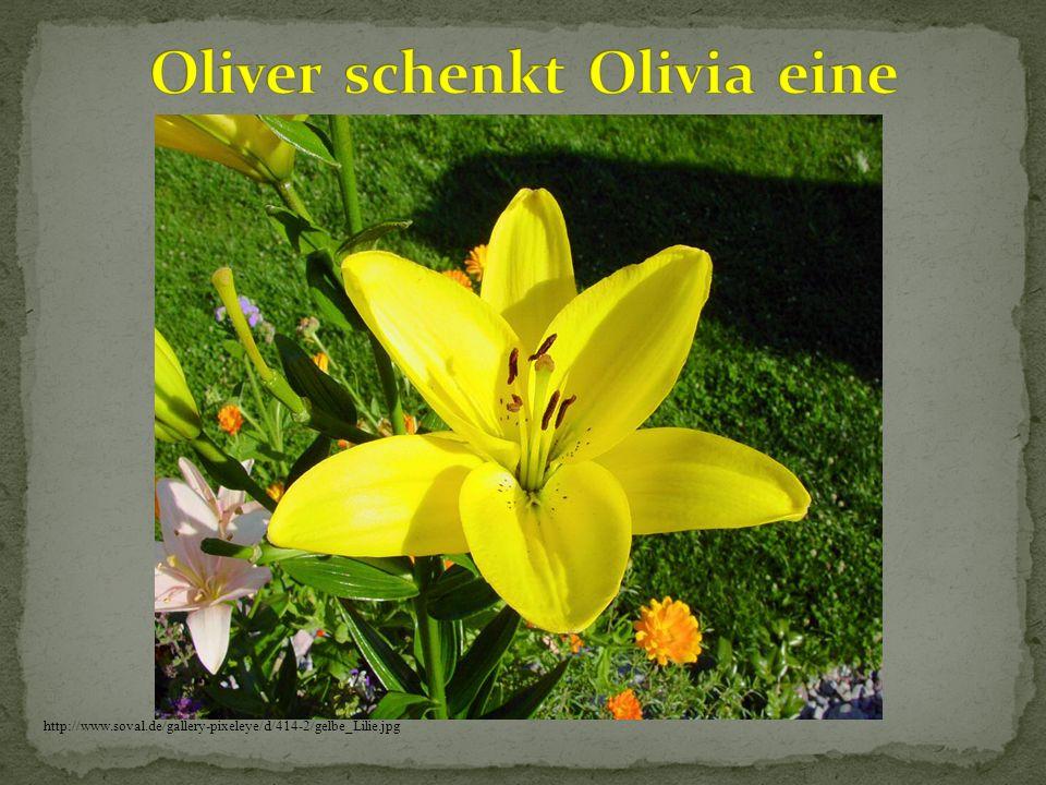 Oliver schenkt Olivia eine