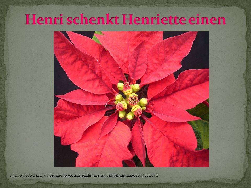Henri schenkt Henriette einen