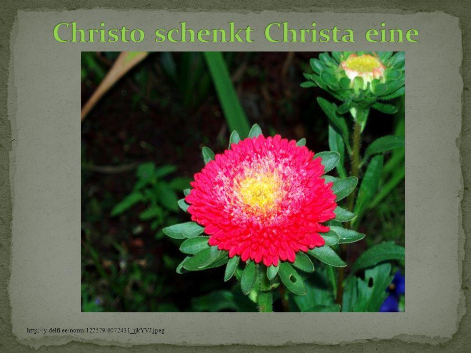 Christo schenkt Christa eine