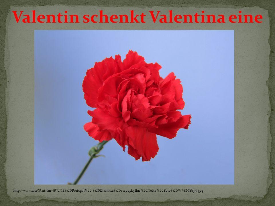 Valentin schenkt Valentina eine