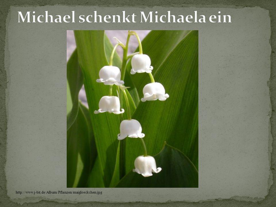 Michael schenkt Michaela ein