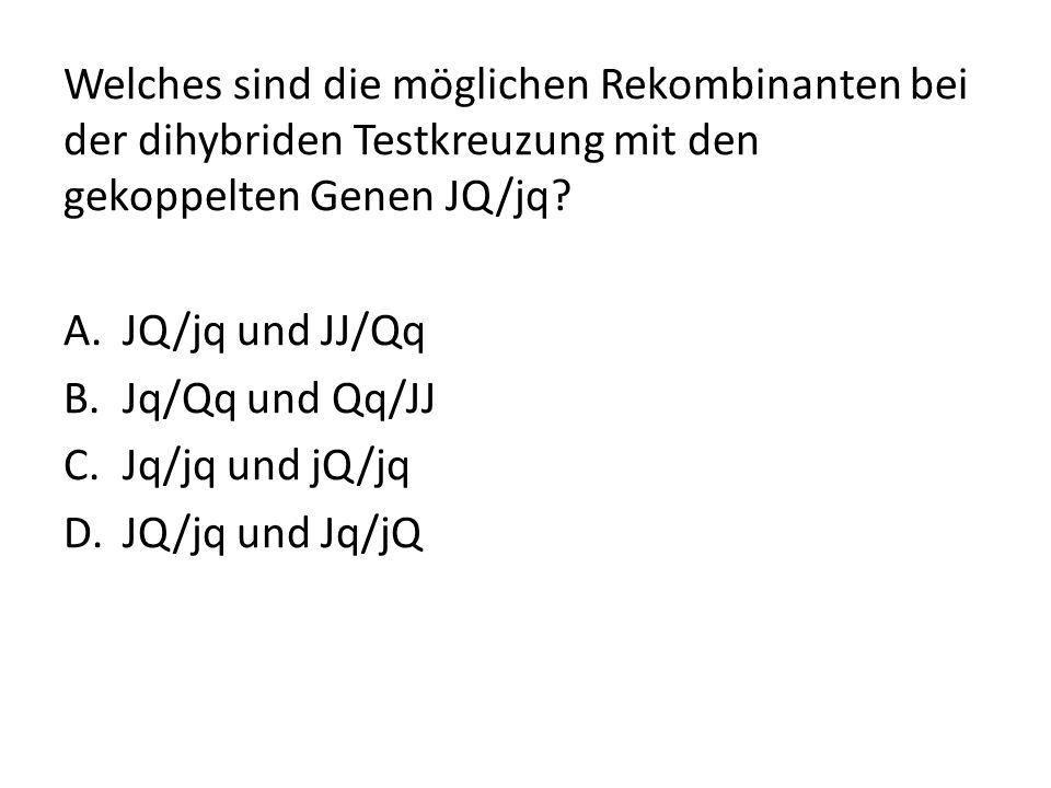 Welches sind die möglichen Rekombinanten bei der dihybriden Testkreuzung mit den gekoppelten Genen JQ/jq