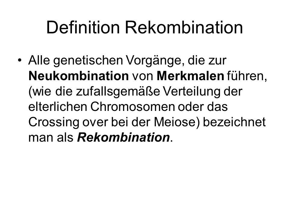 Definition Rekombination