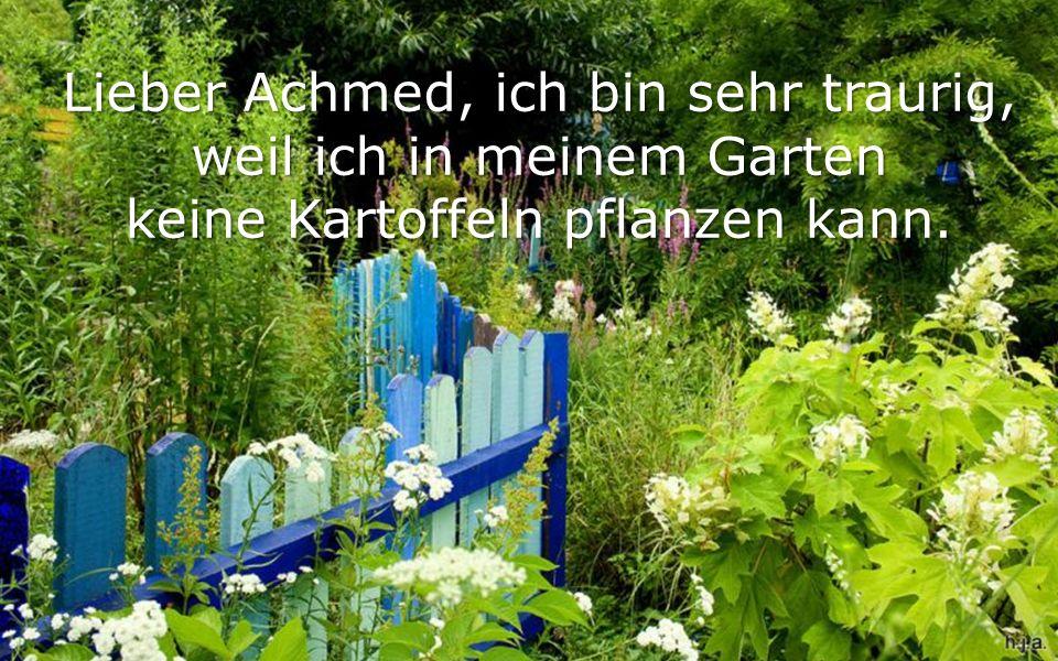Lieber Achmed, ich bin sehr traurig, weil ich in meinem Garten