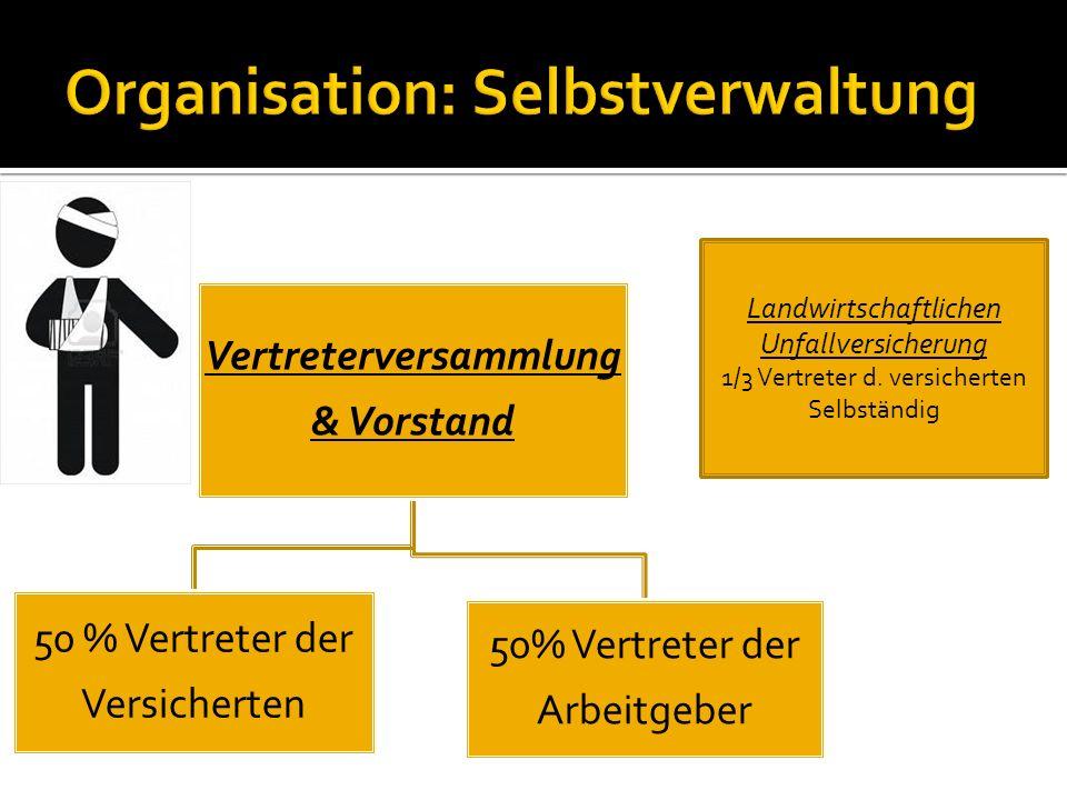 Organisation: Selbstverwaltung