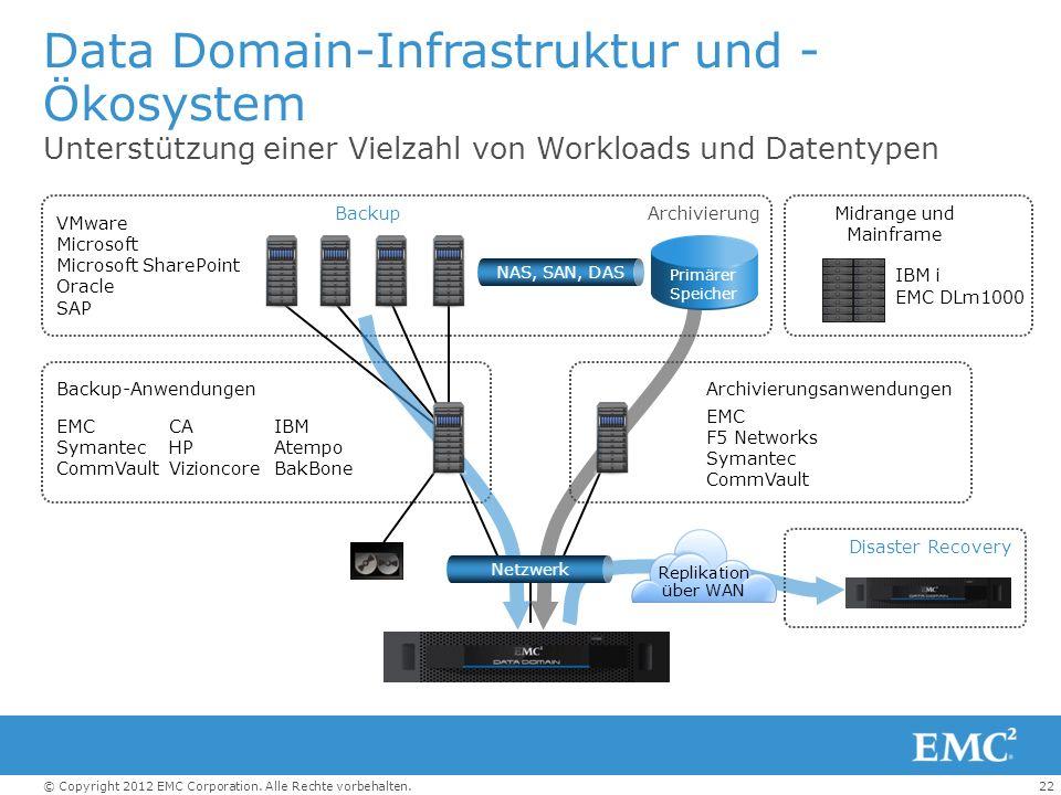 Data Domain-Infrastruktur und -Ökosystem
