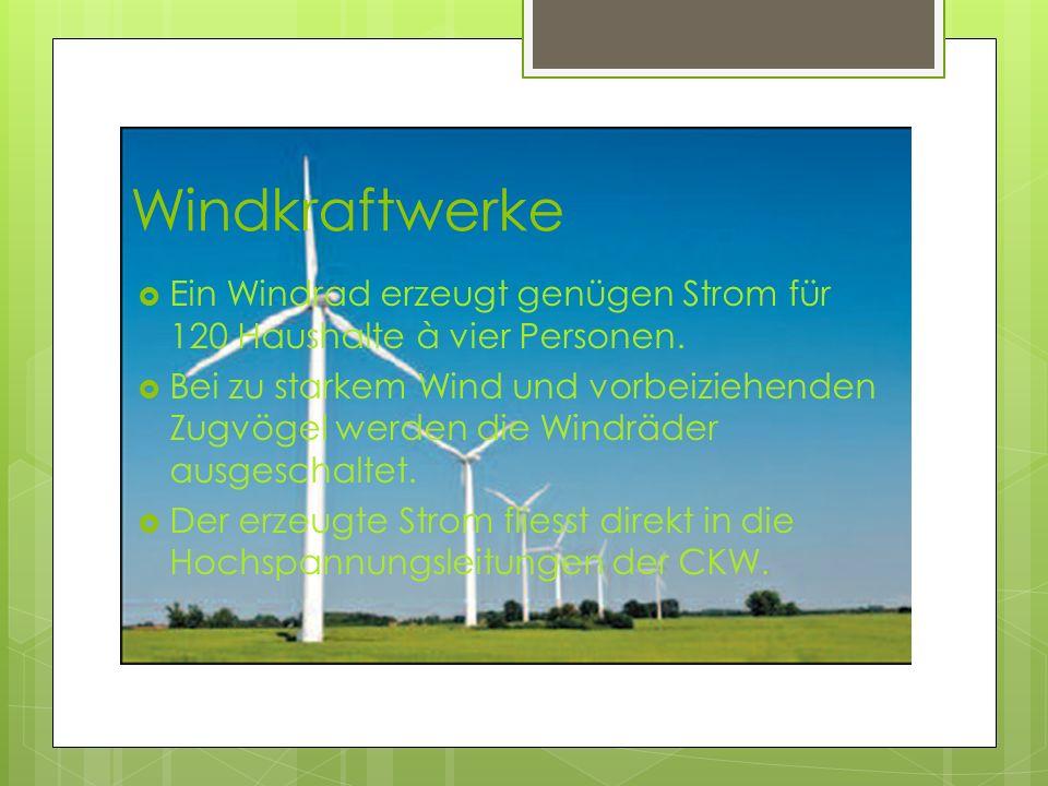 Windkraftwerke Ein Windrad erzeugt genügen Strom für 120 Haushalte à vier Personen.