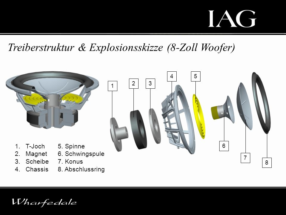 Treiberstruktur & Explosionsskizze (8-Zoll Woofer)