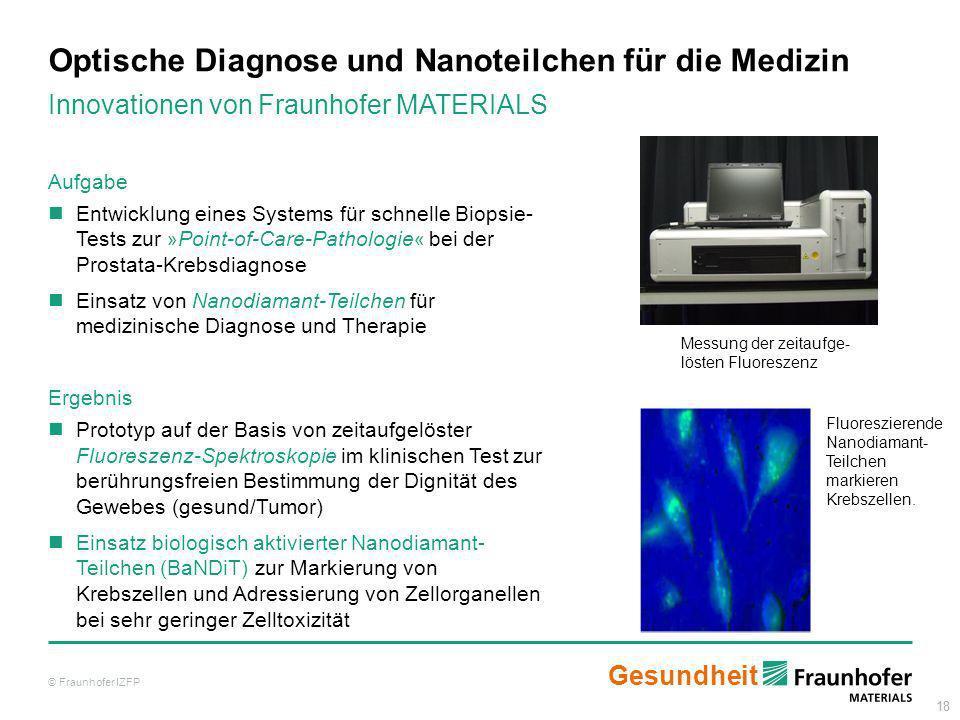 Optische Diagnose und Nanoteilchen für die Medizin
