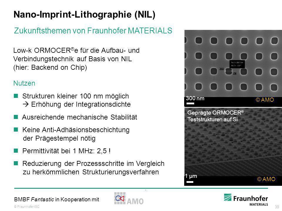Nano-Imprint-Lithographie (NIL)